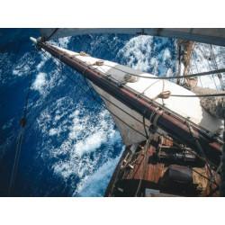 Rhum Tres Hombres Captain's Choice La Palma Vintage 2001 Limited Edition 30 - Magnum Ed. 30 - 56% vol