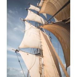 Rhum Tres Hombres Captain's Choice - Edition 38 La Isla Bonita Vintage 2001 -  57,9 %vol - 50cl.